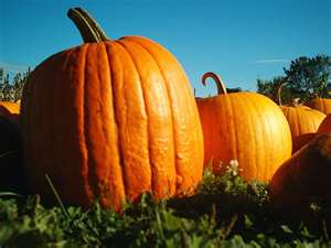 Magical Uses for pumpkins