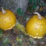 Jack o Lanterns - magical gourds , pumpkin spells