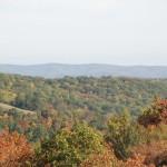 fall-colors-in-wva